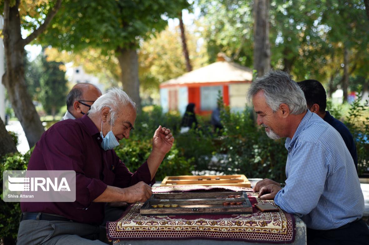 خبرنگاران 30 درصد از جمعیت کشور را تا 30 سال آینده سالمندان تشکیل می دهند